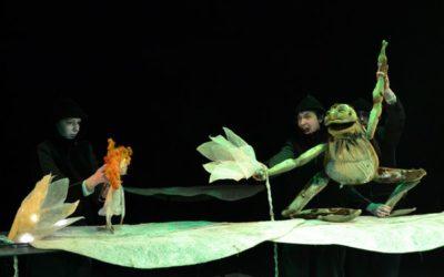 Ульяновский театр кукол показал в Санкт-Петербурге девять спектаклей в рамках федеральной программы «Большие гастроли для детей и молодежи»